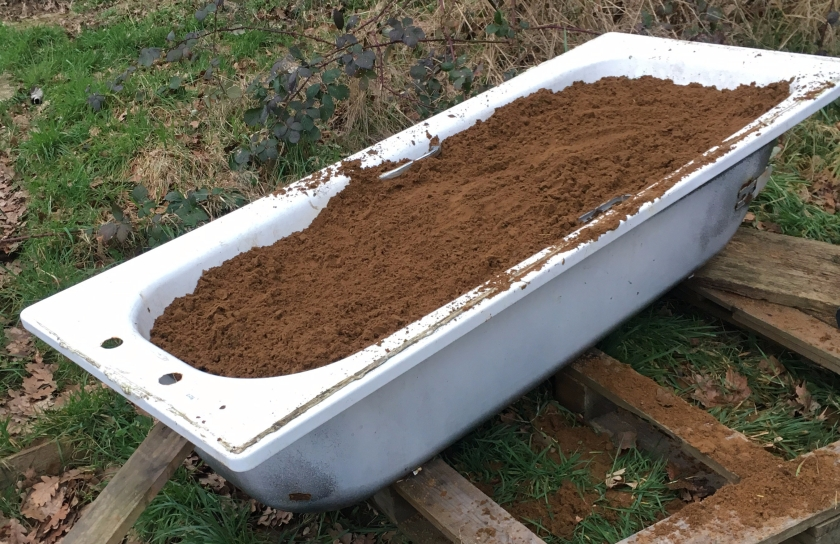 Stage 1 of Carrot Bed in a bathtub